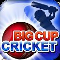 Big Cup Cricket Free logo