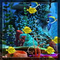 Choose Fishes Live Wallpaper icon