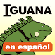 Iguana Magazine Digital Edition