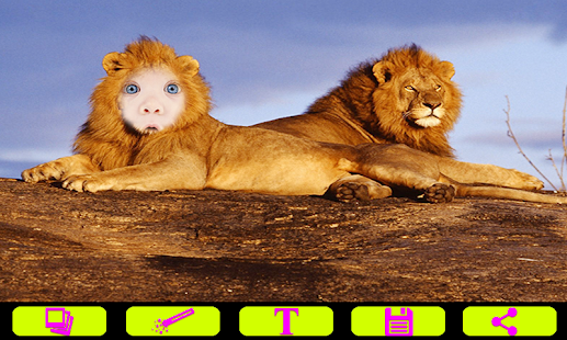 Lion Photo Frames- screenshot thumbnail