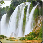 LIVE Waterfall Video WALLPAPER icon