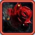 Gothic Rose Live Wallpaper icon