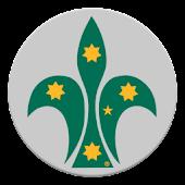 Scouts Oz