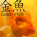 Gold Fish 3D Live Wallpaper icon