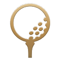 Golf NAVI icon