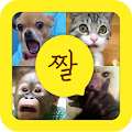App 카톡,카스,밴드에 쓰는 웃긴사진들 (짤방) : 짤모티콘 APK for Windows Phone