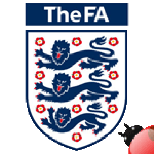 football team logo for england