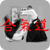 Aikido Kyu Review