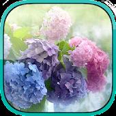 Hydrangea HD Live Wallpaper