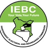 IEBC Provisional Results