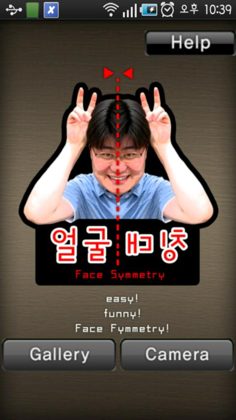 Face Symmetry (얼굴 대칭) - screenshot