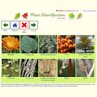 Plant Identification - worldwide icon