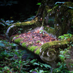 Secret garden by Ivanka Ruter - Buildings & Architecture Decaying & Abandoned