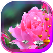 Roses n Diamonds HD LWP