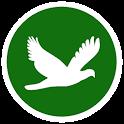 Bird Jar: Birding Checklist