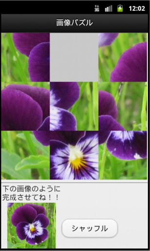 Flower 8-puzzle