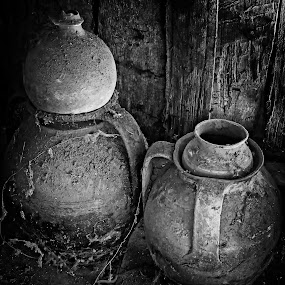 old kitchen by Costin Mugurel - Black & White Objects & Still Life ( black and white, dust, spider's web, earthenware, kitchen )