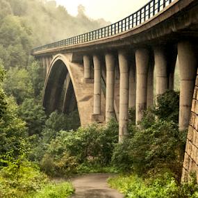 by Mihai  Costea - Buildings & Architecture Bridges & Suspended Structures ( plitvice, bridge, suspended structures, vertical lines, pwc, , path, nature, landscape )