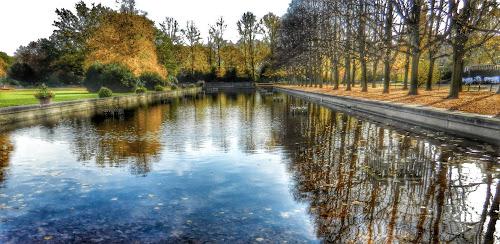 City Lake in Park in Autumn by Nat Bolfan-Stosic - City,  Street & Park  City Parks ( reflection, park, autumn, trees, lake )