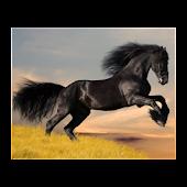Jeu sur l'équitation
