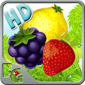 Master Block Crush HD Fruits