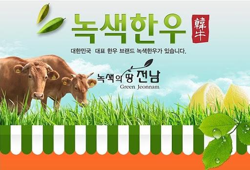녹색한우프라자 목포 한우 전문 1등급 저렴 최고 육질