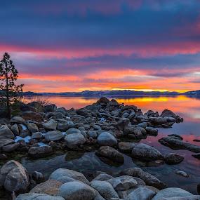 Alpine Alchemy by Mike Lindberg - Landscapes Mountains & Hills ( reflection, sierra nevada, tree, lone pine, sunset, eastern sierra, california, nevada, tahoe, sierra, lake tahoe )