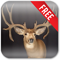 Deer Hunting Live Wallpaper icon