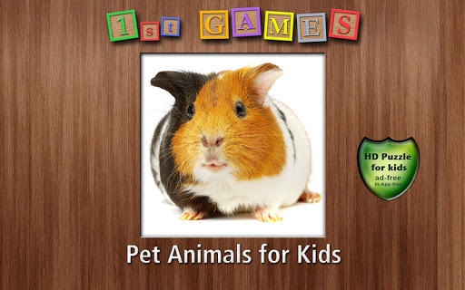 1st Games Pet Animals for Kids