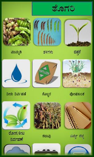 Pegionpea Kannada
