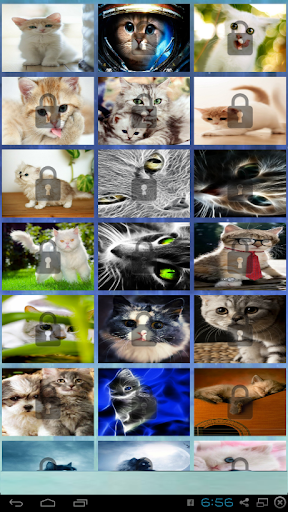Cats lovely puzzle