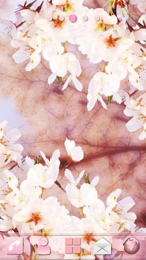 桜 Theme