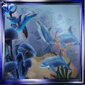 Dolphins In Blue Frame logo