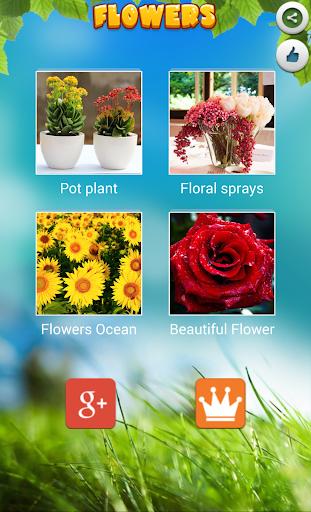 Flower Puzzles