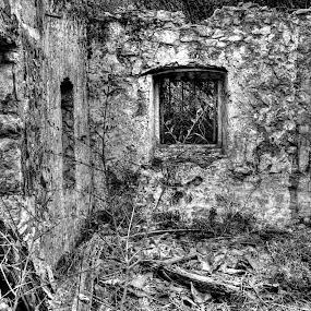 House ruin by Igor Antolović - Black & White Buildings & Architecture ( ruin )