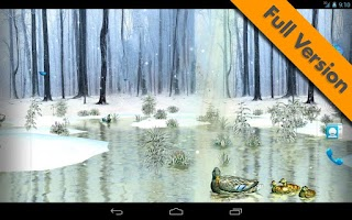 Screenshot of Ducks 3D Live Wallpaper FREE