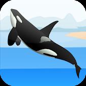 Orca Games
