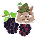 Negro Berry Selector icon