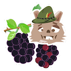 Black Berry Picker icon