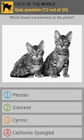 Screenshot of Cats of the world