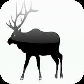 Elk Body Condition Scoring
