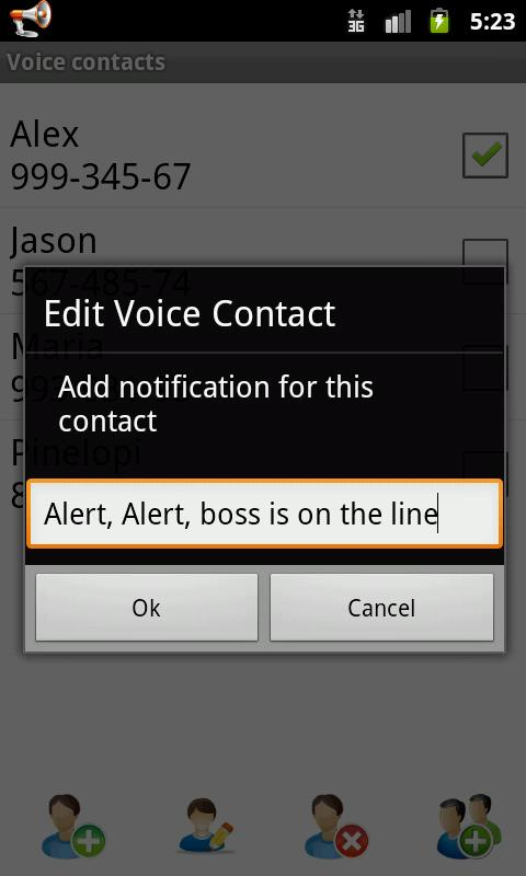 Voice Caller ID + SMS Pro - screenshot