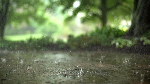 Gotas de lluvia Live Wallpaper