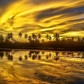 Refleksi Senja by Randi Pratama M - Instagram & Mobile Android ( water, field, reflection, sunset, indonesia, cloud,  )