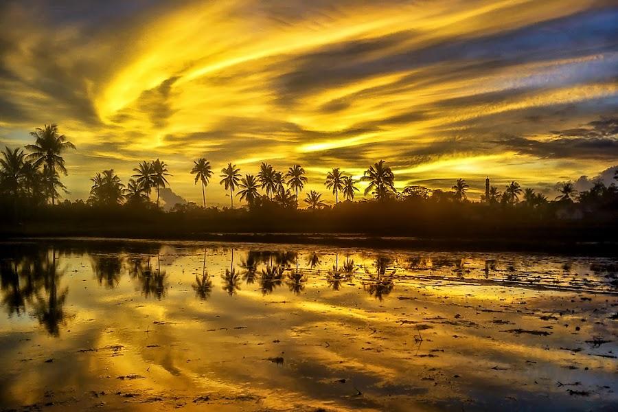 Refleksi Senja by Randi Pratama M - Instagram & Mobile Android ( water, field, reflection, sunset, indonesia, cloud,  )