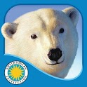 Polar Bear Horizon icon