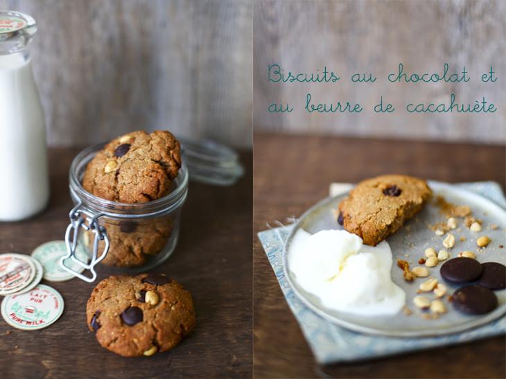 Choco-Peanut Cookies Recipe