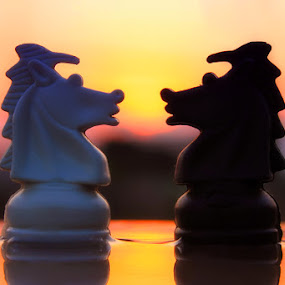 stand with you by Dhimas Prastowo - Artistic Objects Still Life ( #stilllife, #indonesia, #sunset, #chess, #canon, #artistic )