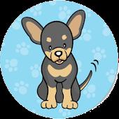 Chihuahua Game
