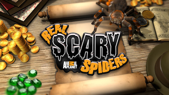 Real Scary Spiders- screenshot thumbnail